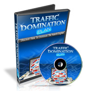 WP Traffic Domination
