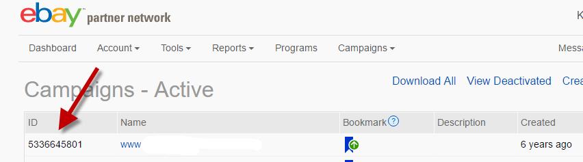 ebay-campaing